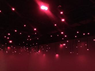 Tatsuo Miyajima: Arrow of Time (Unfinished Life)