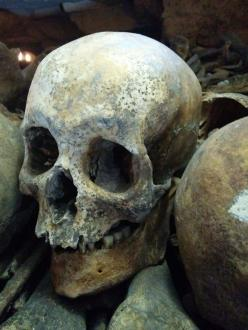 A skull in the Paris Catacombs (photo © André Arden)